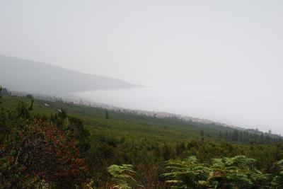 20100806020552-mar-nubes-y-pinos.jpg