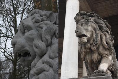 20150503023543-leones-asustados.jpg